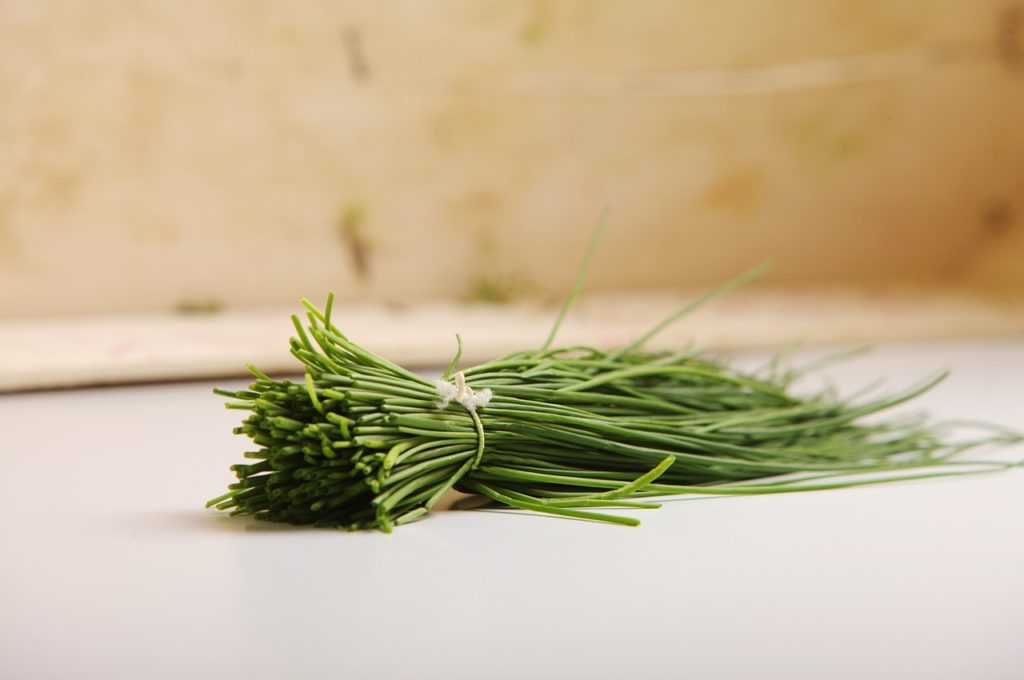 chives-plant-kitchen-herbs-bouquet