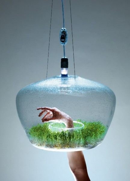 kristyna-pojerova-suspended-glass-greenhouse-lamp