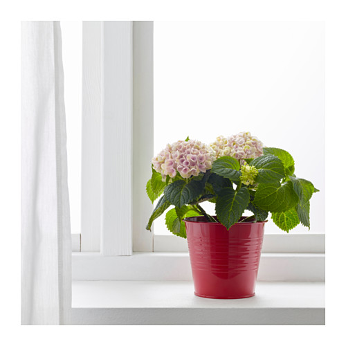 socker-plant-pot-red-ikea
